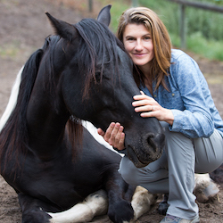Vulnerability with Horses and Clients